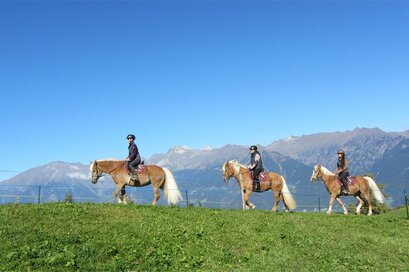 Riding stable Sulfner in Avelengo/Hafling