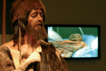 Ötzi in the South Tyrolean Archaeological Museum | © Magnolia