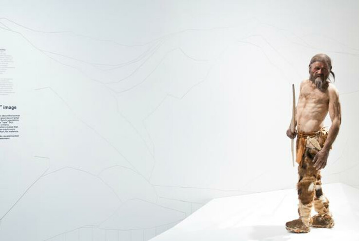 A life-sized representation of Ötzi can be viewed in the South Tyrol Museum of Archaeology in Bolzano | © SMG