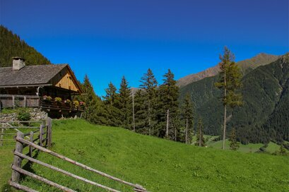 Bergeralm hut Antholzertal