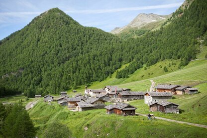 The idyllic Fane Alm Alpine-farm village