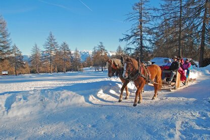 A carriage ride in winter through the Salto hiking area